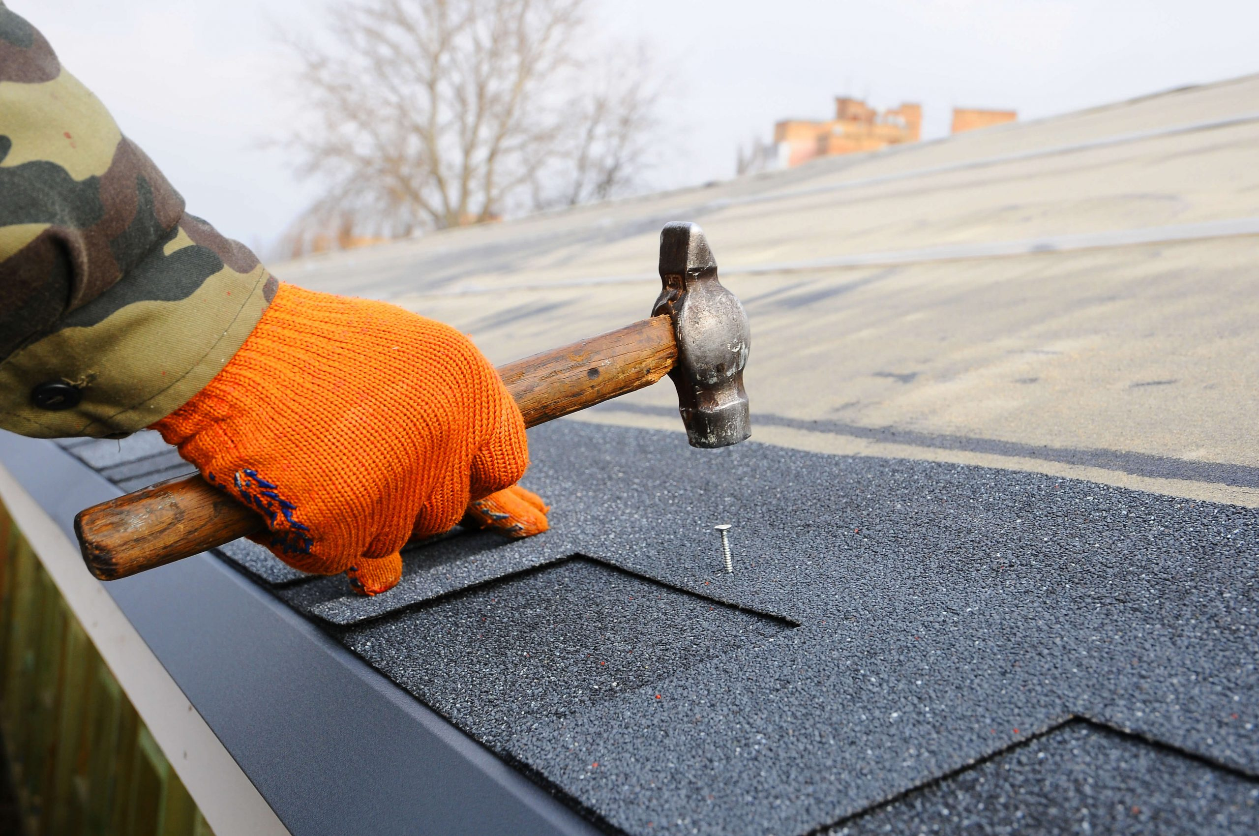 Metal Roofing Lifetime Warranty?